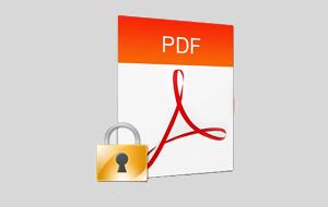 La sicurezza dei documenti pdf